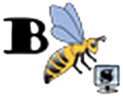 logo bbees